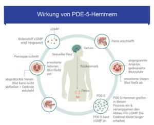 Der PDE-5-Hemmer Viagra Original von Pfizer