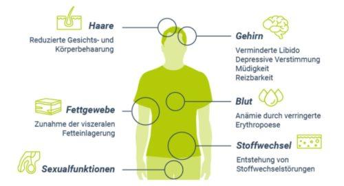 Folgen von Testosteronmangel